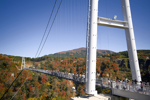 "Kokonoe ""Dream"" large suspension bridge"